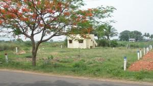 Madurai Pothumbu Village