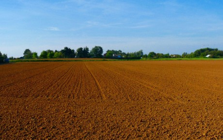 agriculture-land-2